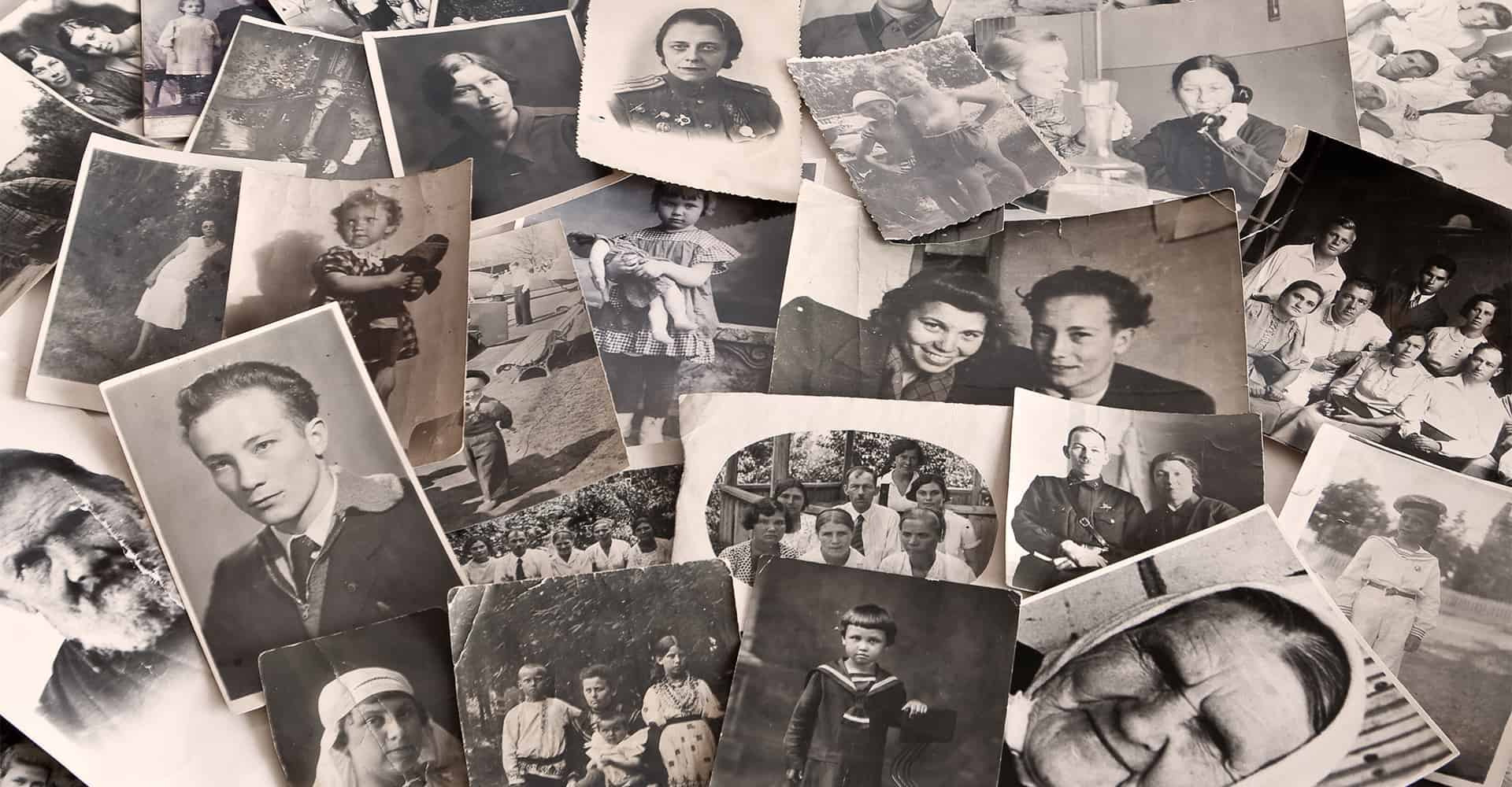 A group of family photographs piled up to build a family tree using genealogy.