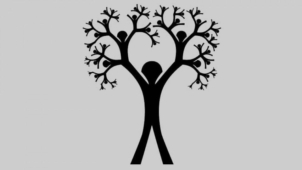 Image showing vintage geneology tree.